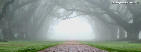 Timeline Covers for Fans   Facebook   Oak Alley Plantation: Things to see!   Scoop.it