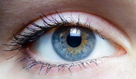 Científicos descubren cura para la ceguera; el mundo celebra | Educación y Nuevas Tecnologías | Scoop.it