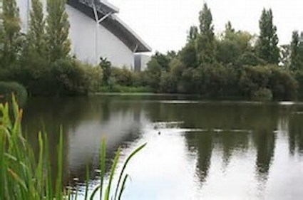 """Council tells residents and landowners """"it's important we work together"""" to ... - Colnbrook Views 