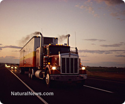 Truckers for the Constitution to shut down D.C. roads, arrest violators of oath of office   Gov and law - Joe smith   Scoop.it
