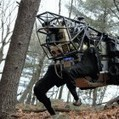 Boston Dynamics: Google kauft zum Jahresende Militärroboter-Hersteller - Golem.de | That's science | Scoop.it