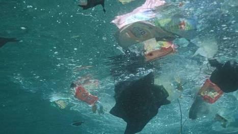 France Info - Continent de déchets : départ d'une nouvelle expédition dans l'Atlantique | Revue de Presse 7ème Continent | Scoop.it