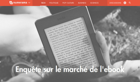 Qui veut la peau du livre numérique ?  Michel Beck , Numérama | Le nouveau monde du livre par la Fondation littéraire Fleur de Lys | Scoop.it