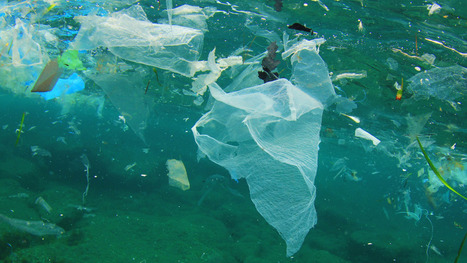 These five countries are responsible for up to 60 percent of the #plastic in the #ocean | Messenger for mother Earth | Scoop.it