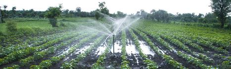 Le paradoxe de l'agriculture intensive : nourrir l'humanité en détruisant le sol nourricier | Agroalimentaire des Pays du Sud | Scoop.it