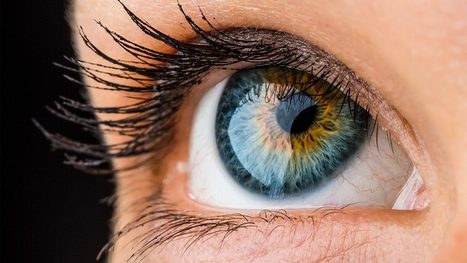 Video: Most of your eye's color sensors don't actually see color | Biology Education Resources | Scoop.it