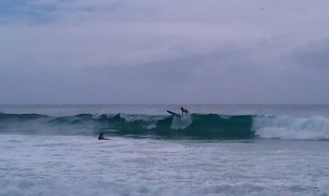 Surfer - | OHS - Five Functional Assessments | Scoop.it