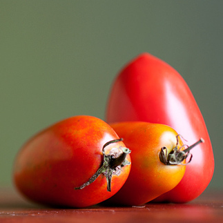 Paste Tomatoes for all Purposes: Organic Gardening | Modern-Day Homesteader | Scoop.it