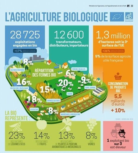 1.3 millions d'hectares en agriculture bio en France | Groupe ECOCERT | Scoop.it