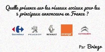 Quelle présence sur les réseaux sociaux pour les 5 principaux annonceurs en France ? | Communications Industry News | Scoop.it