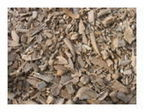 Heap of cattle bones may mark ancient feasts -- Sott.net | Archaeology News | Scoop.it
