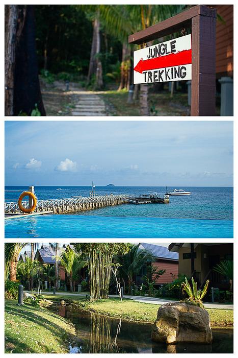 Tropical Tioman, Malaysia. - The Travel Manuel   Explore Malaysia On Rental Cars   Scoop.it