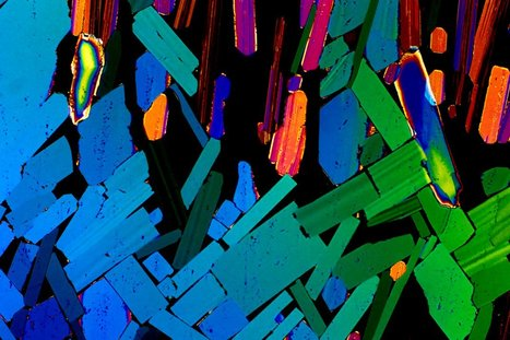 What your drink looks likethrougha microscope | Art and Science | Scoop.it