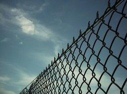 EdNext Podcast: Do Vouchers Reduce Incarceration Rates? - Education Next   lead.libr.edu   Scoop.it