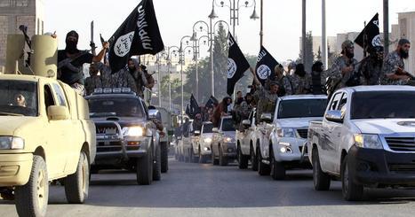 GIARDINIERE IN IRPINIA, DIVENTA JIHADISTA DELL'ISIS | Professional Security Agency | Scoop.it