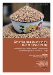 New Report: Achieving Food Security in the Face of Climate Change | The Great Transition | Scoop.it