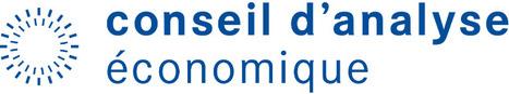Administration numérique - Conseil d'Analyse Economique | e-santé, TIC & co | Scoop.it
