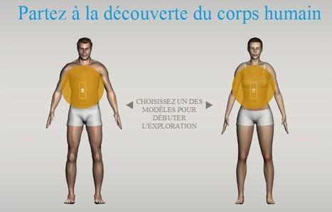 Corpus : le site qui vous immerge dans le corps humain - Actualitté.com | Jeux sérieux | Scoop.it