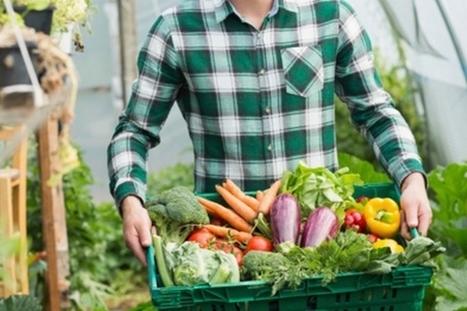 Open Food France : créer son propre réseau d'alimentation locale   Enjeux agricoles contemporains   Scoop.it