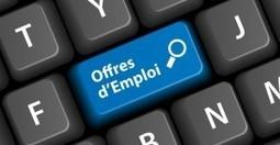 Comment postuler à une offre d'emploi ? | Astuces originales pour faire son entrée dans le monde professionnel | Scoop.it