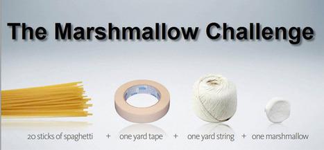 Le problème du marshmallow | Economie de l'innovation | Scoop.it