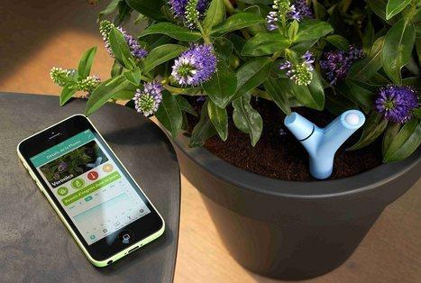 Quand la high-tech aide à comprendre les plantes | Revue | Scoop.it