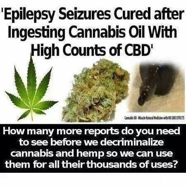 Tweet from @THEMMEXCHANGE | Highsupplies - An Online Cannabis Shop | Scoop.it