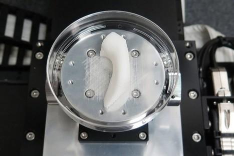 Une imprimante 3D qui reconstitue des organes souhaite bouleverser la médecine - Sciences - Numerama | Ressources pour la Technologie au College | Scoop.it