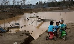 Illegal gold mining drives human rights abuses in Latin America, claims study | DESARROLLO Y COOPERACIÓN | Scoop.it