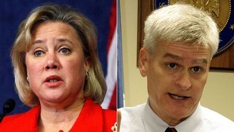 Landrieu loses reelection bid in Louisiana to Republican challenger Cassidy | #Communication | Scoop.it