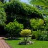 EJ Landscape Management