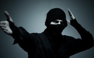 Are Ninjas, Gurus & Rockstars Endangered Species in 2013? | webmarketing newsroom | Scoop.it