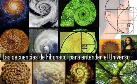 El patrón de la vida, las secuencias de Fibonacci - Cerebro Digital | Informática Educativa y TIC | Scoop.it