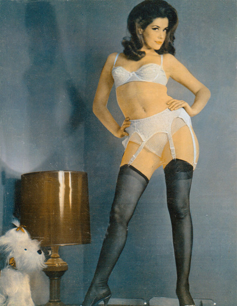 Vintage Dawn Grayson in Lingerie & Stockings | Sex History | Scoop.it