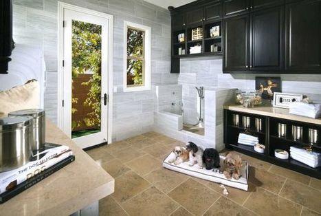 New Homebuilding Trend: Custom Pet Suites | Seattle New Homes | Scoop.it