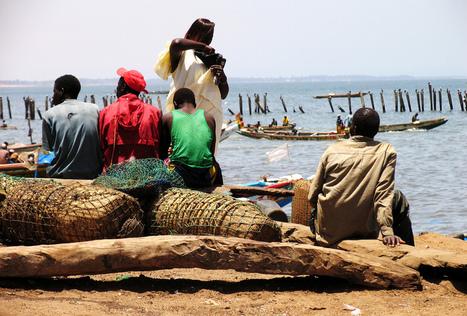 Les petits pêcheurs, acteurs sous-estimés del'économie africaine | Biodiversité | Scoop.it