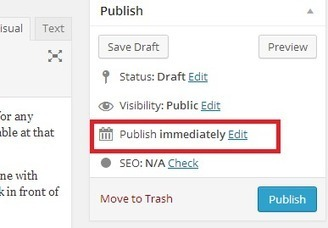 How to Schedule Your Posts in WordPress | WordPress and Web Design | Scoop.it
