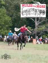 Mules and More Magazine | Horse and mule news items | Scoop.it