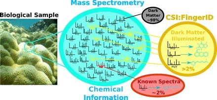 Illuminating the dark matter in metabolomics | Natural Products Chemistry Breaking News | Scoop.it