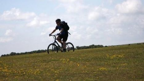 Cycle insurance revenues boosted by 'Mamils' - BBC News | Business Studies | Scoop.it