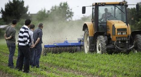 Plus de 300 GIEE qui s'engagent dans l'agro-écologie | Alim'agri | Action publique pour le développement durable des territoires et de l'agriculture | Scoop.it