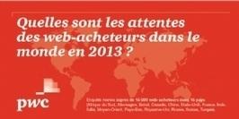 Infographie | Quid des attentes des web-acheteurs en 2013 à travers le monde ? | Mobile SEO MSEO | Scoop.it