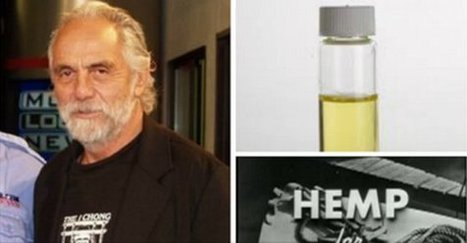 "Tommy Chong of 'Cheech & Chong' Fame: ""I'm Cancer-Free"" Thanks to Hemp Oil and the Right Diet 