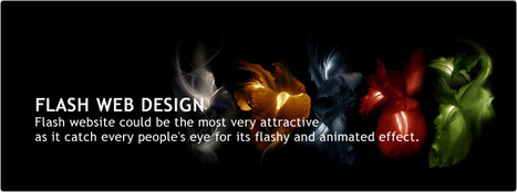 Flash Website Designer | Affordable SEO Service | Scoop.it