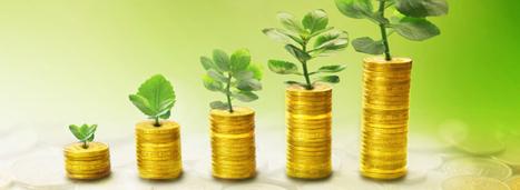 Loi de finances pour 2016 : ce qui a été voté en matière d'environnement | Déchets & Assainissement | Scoop.it