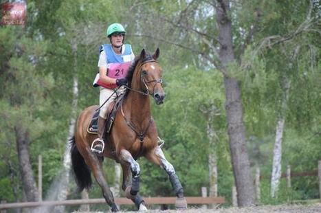 Vezins. Un concours complet d'équitation | Actu Equine en Pays de la Loire | Scoop.it