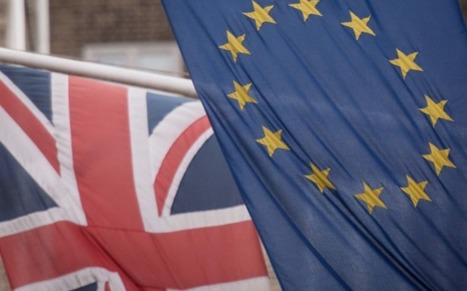 Business 'indifferent' to Brexit, poll finds   Welfare, Disability, Politics and People's Right's   Scoop.it