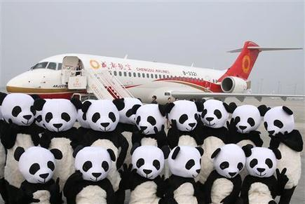 First made-in-China jetliner makes debut commercial flight | Sustain Our Earth | Scoop.it