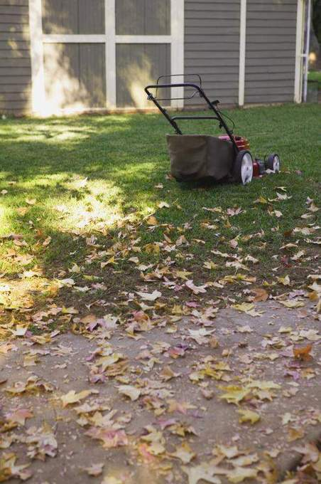 Yard MD: Fall is best time for a lawn-care reality check - Appleton Post Crescent | Thinking Something New For My Lawn | Scoop.it