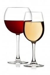 Will climate change decimate the wine industry? | Vitabella Wine Daily Gossip | Scoop.it